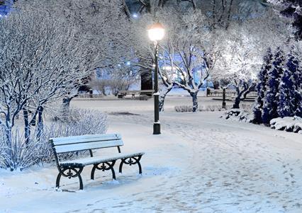 Best Outside Christmas Lights